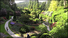terpstra the butchart gardens